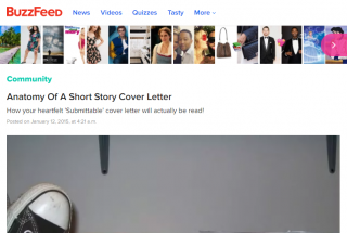 Anatomy Of A Short Story Cover Letter